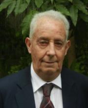 Avner Adin
